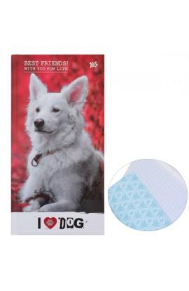 """Блокнот 100*200/64 7БЦ, фольга серебро, УФ выборка, мат.ламинация  """"Cool pets """" YES"""